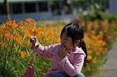 赤科山的金針花:IMGP5306.jpg