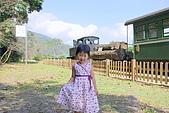 太平山之土場及傳統藝術中心:IMGP2298